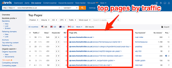Ahrefs Top Pages by Traffic