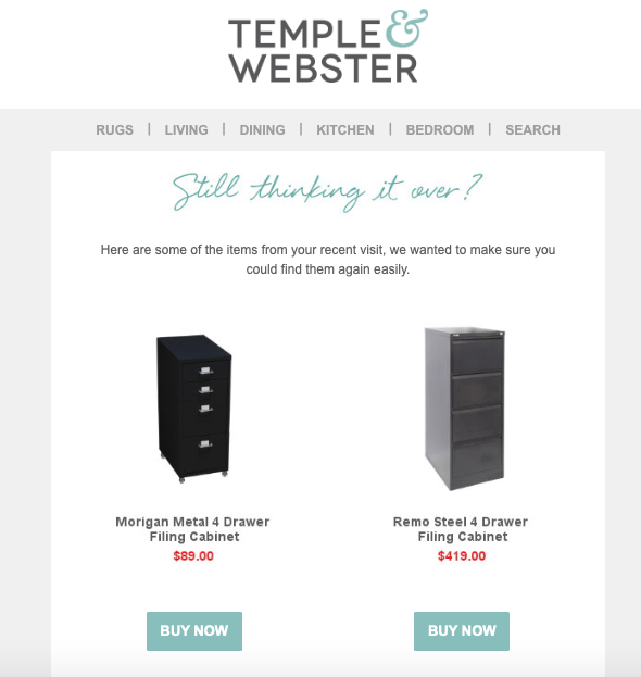ecommerce nuture email example